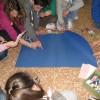 Attività scuole - Mille viaggi parole - Ca Rezzonico 15