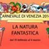 carnevale venezia 2014 ca rezzonico